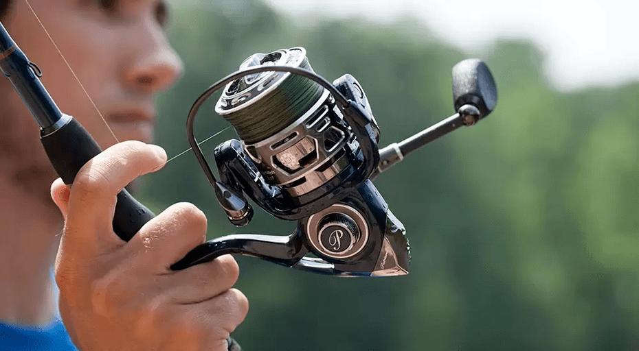 Hur finner du de bästa fiskerullarna